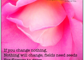 If you change nothing, nothing will change; fields need seeds for flowers to grow. - Allison Pescosolido, M.A.
