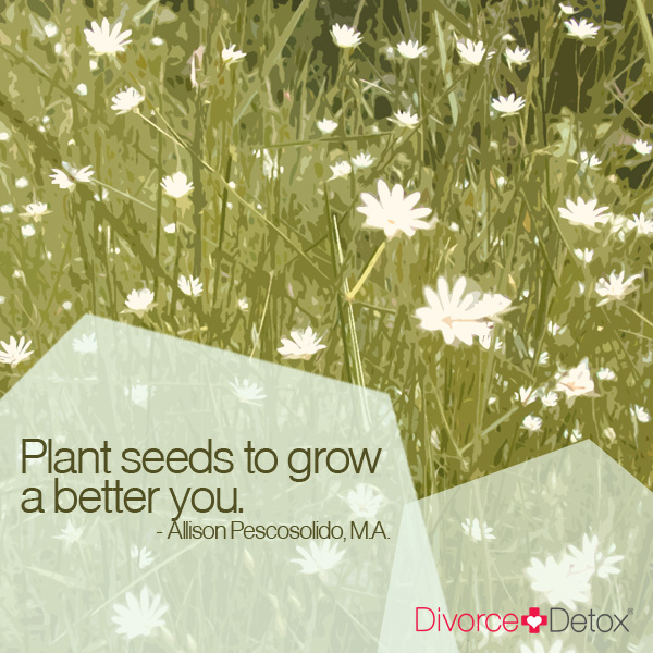 Plant seeds to grow a better you. - Allison Pescosolido, M.A.