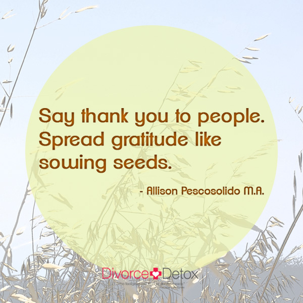 Say thank you to people. Spread gratitude like sowing seeds. - Allison Pescosolido, M.A.