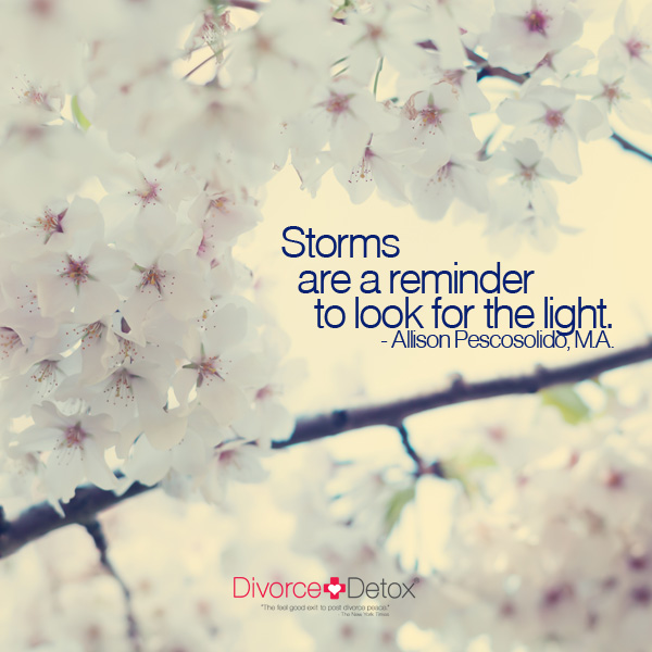 Storms are a reminder to look for the light. - Allison Pescosolido, M.A.