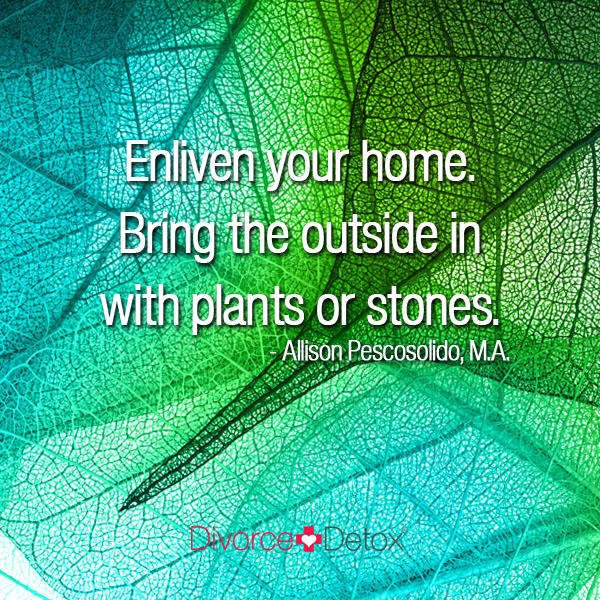 Enliven your home. Bring the outside in with plants or stones. - Allison Pescosolido, M.A.