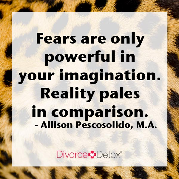 Fears are only powerful in your imagination. Reality pales in comparison. - Allison Pescosolido, M.A.