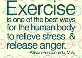 Exercise is one of the best ways for the human body to relieve stress and release anger. - Allison Pescosolido, M.A.