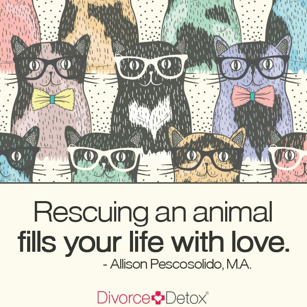 """Rescuing an animal fills your life with love."" - Allison Pescosolido, M.A."