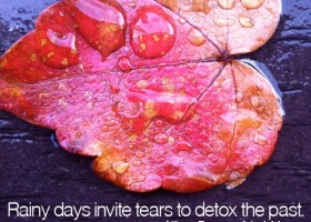 Rainy days invite tears to detox the past. - Allison Pescosolido, M.A.